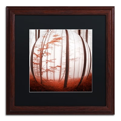 Trademark Fine Art Autumn to Burn by Philippe Sainte-Laudy 16 x 16 Black Matted Wood Frame (886511795952)