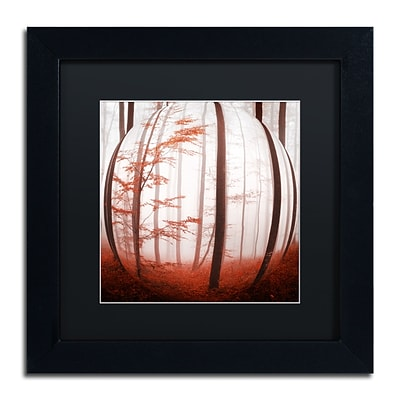 Trademark Fine Art Autumn to Burn by Philippe Sainte-Laudy 11 x 11 Black Matted Black Frame (886511795860)