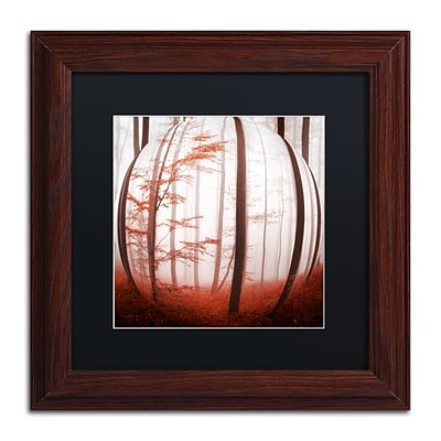 Trademark Fine Art Autumn to Burn by Philippe Sainte-Laudy 11 x 11 Black Matted Wood Frame (886511795945)