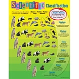 Scientific Classification Learning Chart