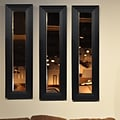 Rayne Mirrors Molly Dawn Solid Black Angle Mirror Panel; 29.5 H x 11.5 W x 0.75 D