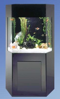 Midwest Tropical Fountain Aqua 50 Gallon Custom