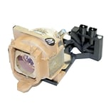 eReplacements 300 W Replacement Projector Lamp for BenQ PB8263; Beige (5J-J2H01-001-ER)