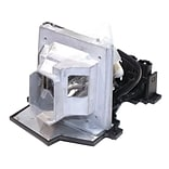 eReplacements 180 W Replacement Projector Lamp for Optoma DS303; Silver (BL-FU200C-ER)