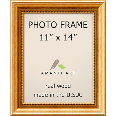 Amanti Art  Townhouse Gold Wood Photo Frame 11 x 14 (DSW1385302)