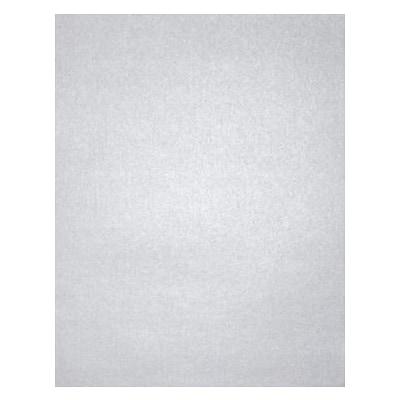 LUX® Cardstock, 11 x 17, Silver Metallic, 1000 Qty (1117-C-M06-1M)