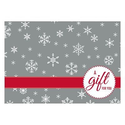 LUX® #17 Mini Gift Card Envelopes, 2 11/16 x 3 11/16, Silver Snowflake, 1000 Qty (LEVC-H02-1M)