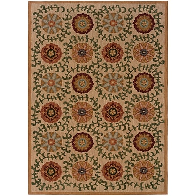StyleHaven Transitional Floral Nylon 67 X 96 Beige/Green Area Rug (WINF2175E6X9L)