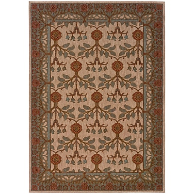 StyleHaven Transitional Floral Nylon 67 X 96 Beige/Blue Area Rug (WINF2177F6X9L)