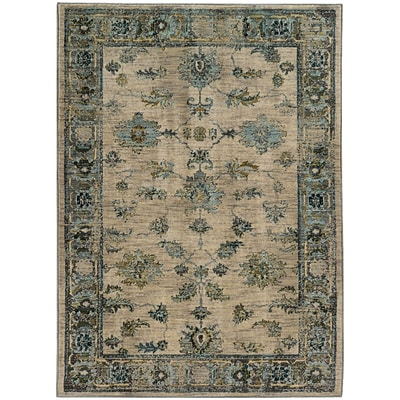 StyleHaven Distressed Traditional Nylon/Polypropylene 53X76 Ivory/Blue Area Rug (WSDN5171C5X8L)