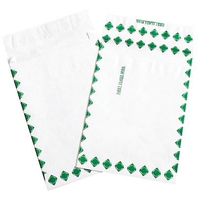 Partners Brand Tyvek Expandable Envelopes, 12 x 16 x 2, First Class, White/Green, 100/Case (TYE12162FC)