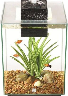 Hagen Fluval 5 Gallon Chi II Aquarium