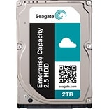 Seagate Enterprise Capacity ST2000NX0263 2TB SAS Internal Hard Drive