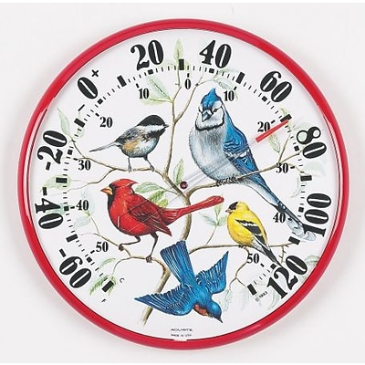 Accurite  Designer Edition 12 .50 inch In-Outdoor Songbirds Thermometer (GC13137)