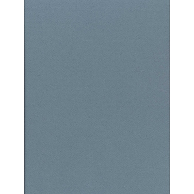 Canson Mi-Teintes Mat Board Light Blue 16 In. X 20 In. [Pack Of 5] (5PK-100510147)