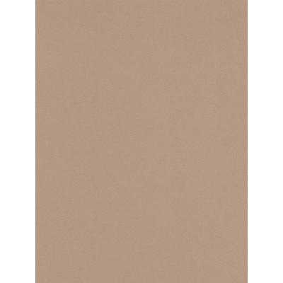 Canson Mi-Teintes Mat Board Sand 16 In. X 20 In. [Pack Of 5] (5PK-100510139)