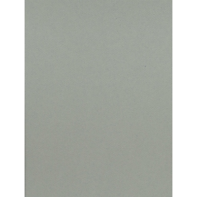 Canson Mi-Teintes Mat Board Sky Blue 16 In. X 20 In. [Pack Of 5] (5PK-100510141)