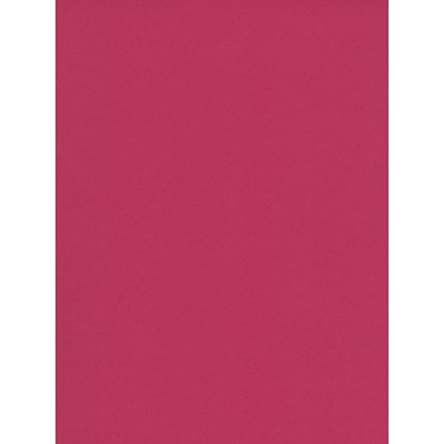 Canson Mi-Teintes Tinted Paper, Raspberry, 19 In. x 25 In., Pack Of 10 (10PK-100511275)