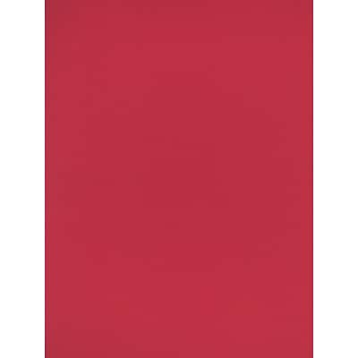 Canson Mi-Teintes Tinted Paper, Red, 8.5 In. x 11 In., Pack Of 25 (25PK-100511319)