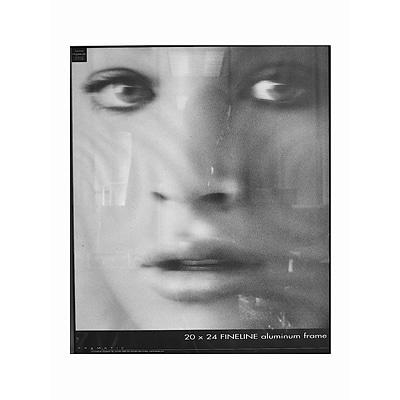 Framatic Fineline Aluminum Frames Black 20 In. X 24 In. (F2024B ...
