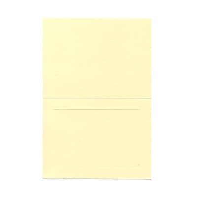 JAM Paper® Blank Foldover Cards , 4 5/8 x 6 1/4, Ivory Panel  500/Box (309932B)