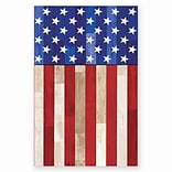 Amscan Old Glory Plastic Tablecover, 54 x 102, 3/Pack (571618)