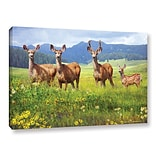 ArtWall Deer Family by Chris Vest Photographic Print on Wrapped Canvas; 12 H x 18 W x 2 D