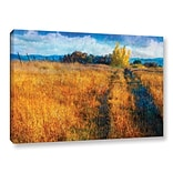 ArtWall Path at Van Pelts by Chris Vest Painting Print on Wrapped Canvas; 24 H x 36 W x 2 D