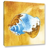 ArtWall Close up of Shell by Irena Orlov Painting Print on Wrapped Canvas; 14 H x 14 W x 2 D