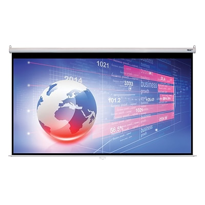 Hamilton Buhl™ WS-W74131 Manual Pull Down HDTV Projector Screen, 150