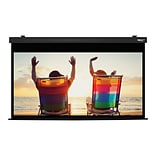 Hamilton Buhl™ HBS4987BK Electric HDTV Projector Screen, 100