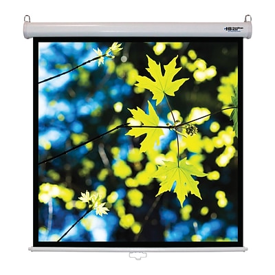 Hamilton Buhl™ WS-W50 Manual Pull Down Square Projector Screen, 71