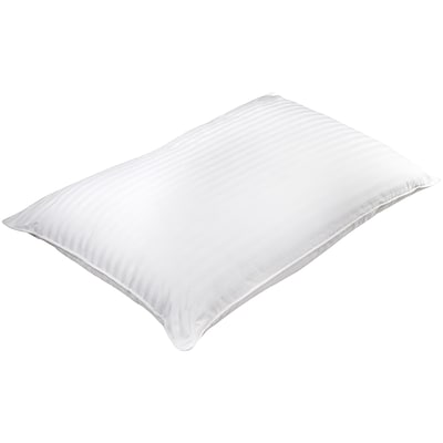 Barska Aus Vio 100% Silk Filled Pillow Queen Size  (BM12052)