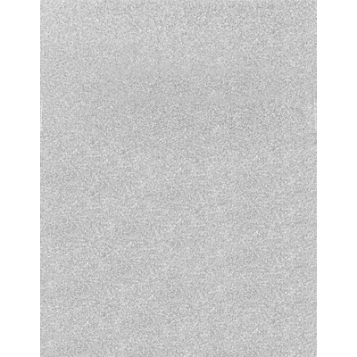 LUX 8 1/2 x 11 Paper (8 1/2 x 11)  - Silver Sparkle - Pack of 250 (2445120)