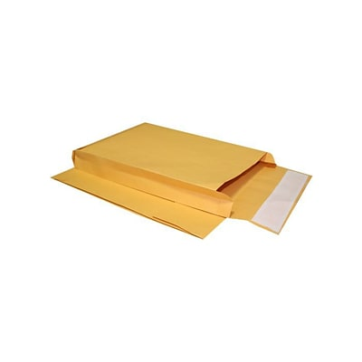 LUX 8 x 12 x 3 Expansion Envelopes (8 x 12 x 3)  -  Brown Kraft - Pack of 500 (2444746)