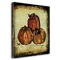 Tangletown Fine Art Pumpkins by Sally Barlow Graphic Art on Wrapped Canvas