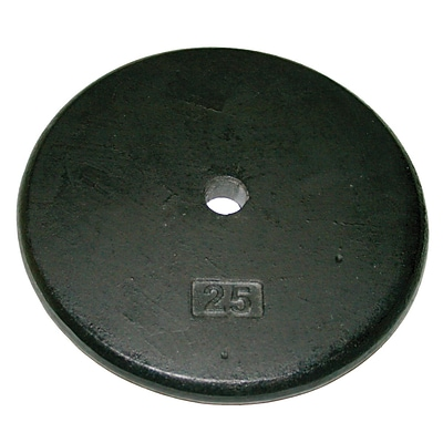 Iron Disc Weight Plate - 25 lb