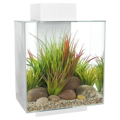 Hagen 6 Gallon Edge Aquarium Kit