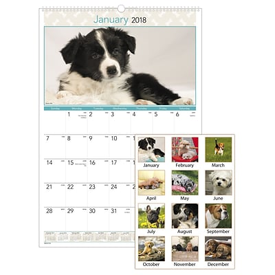 2018 AT-A-GLANCE® Puppies Monthly Wall Calendar, 12 Months, January Start, 15-1/2 x 22-3/4 (DMW167-28-18)
