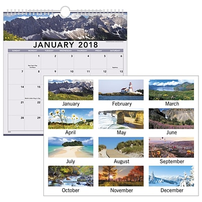 2018 AT-A-GLANCE® Recycled Landscape Monthly Wall Calendar, 12 Months, January Start, 12 x 12, Wirebound (88200-18)
