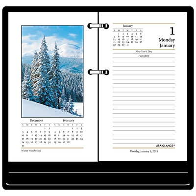 2018 AT-A-GLANCE® Daily Photographic Loose-Leaf Desk Calendar Refill, 12 Months, January Start, 3-1/2 x 6 (E417-50-18)