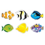 Fish Mini Accents® Variety Pack