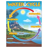 Trend® The Water Cycle Learning Charts