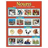 Trend® Nouns Learning Charts