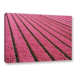 Brayden Studio Floral Stripes III Photographic Print on Wrapped Canvas; 8 H x 12 W x 2 D