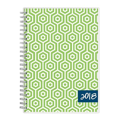 2018 Dabney Lee for Blue Sky 5-7/8 x 8-5/8 Weekly/Monthly Frosted Planner Notes, Hexagon (103351)