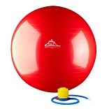 2000lbs Static Strength Exercise Stability Ball with Pump, 65cm, Red