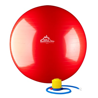 2000lbs Static Strength Exercise Stability Ball with Pump, 55cm, Red