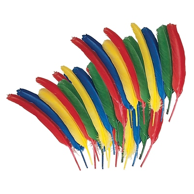 Creativity Street® Quill Feathers, Assorted Color, 24/Pack (CK-4503)