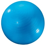 Dick Martin Sports Exercise Ball, 24(Dia), Blue